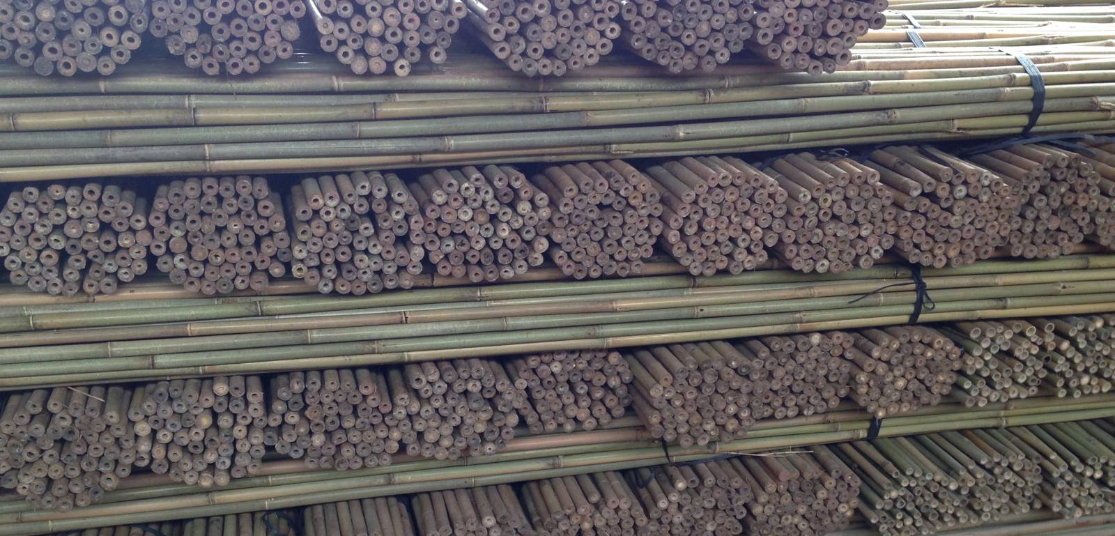 tuteur bambou rond importateur de bambous et mati res v g tales naturelles pour tuteurage. Black Bedroom Furniture Sets. Home Design Ideas