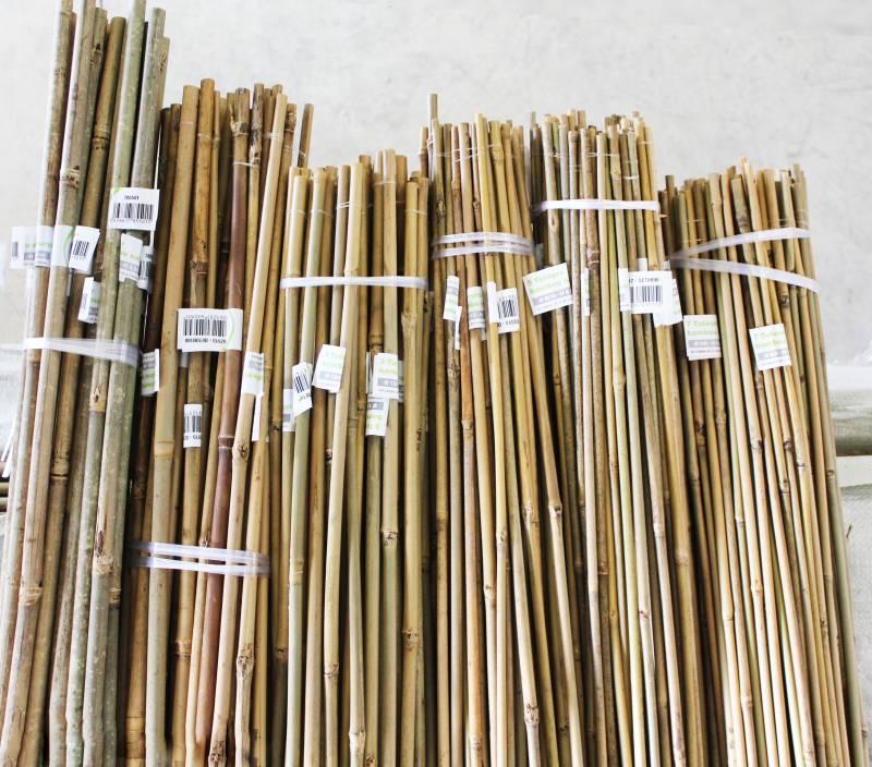 Importateur de bambous et mati res v g tales naturelles - Tuteur bambou gros diametre ...